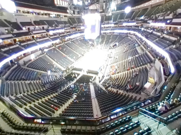 Section 317