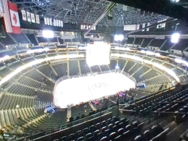 Section 306