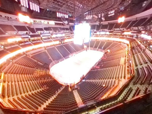 Section 313